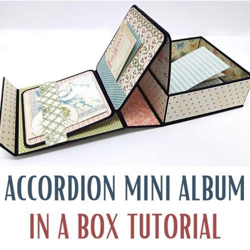 Multi Accordion Mini Album Party